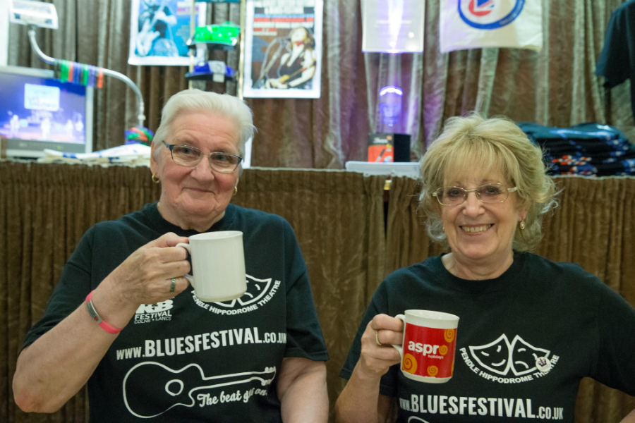 Festival Volunteers Needed